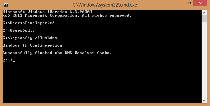 Commavd Prompt Flush DNS
