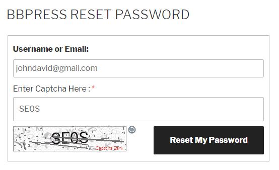 Text Captcha bbPress Reset Password