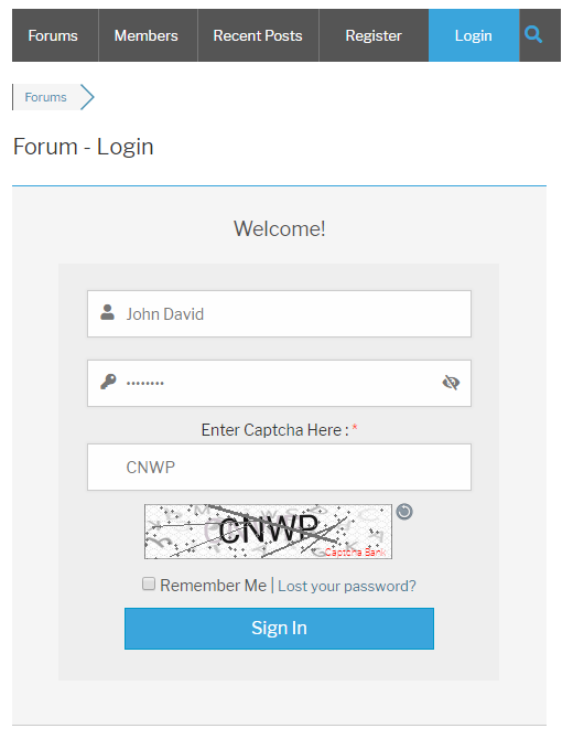 Text Captcha wpForo Login Form