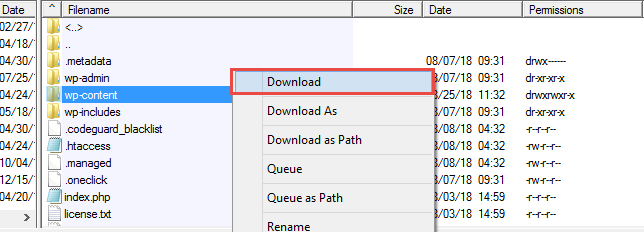 Download wp Content Folder