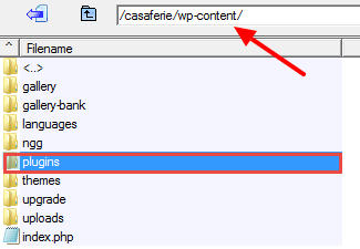 Uploading Plugins from wp-Content Folder